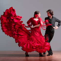 flamenko_02
